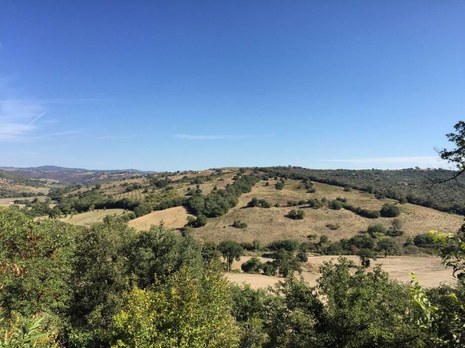 weekend in maremma toscana panorama dal giardino b@b Le Tartarughe